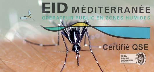 Clapiers expérimente la lutte scientfique contre le moustique-tigre